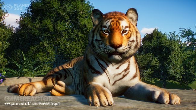 Planet Zoo - Provata la beta