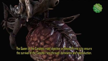 Dolmen - Ascension Caniptei Dev Diary