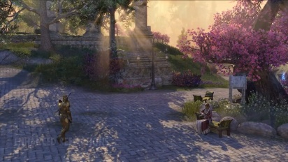 The Elder Scrolls Online: Console Enhanced Preview